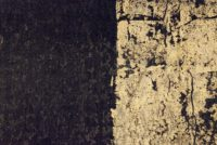 Toile Noir Or